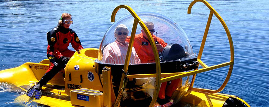 Submarine with two people inside 和 a diver in the tail end